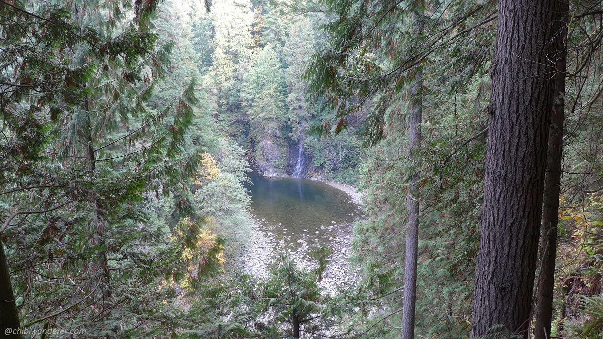 View of Falls from Capilano Bridge Park Vancouver