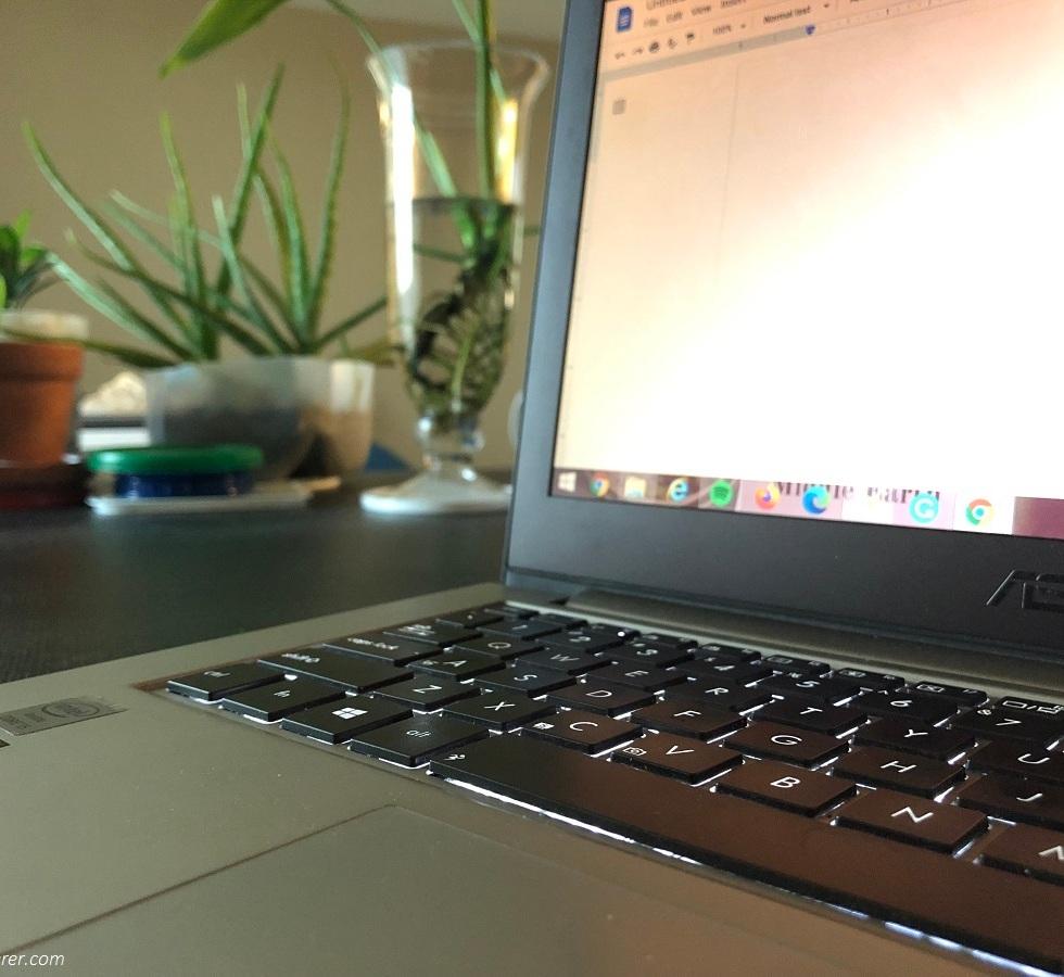 A laptop beside house plants