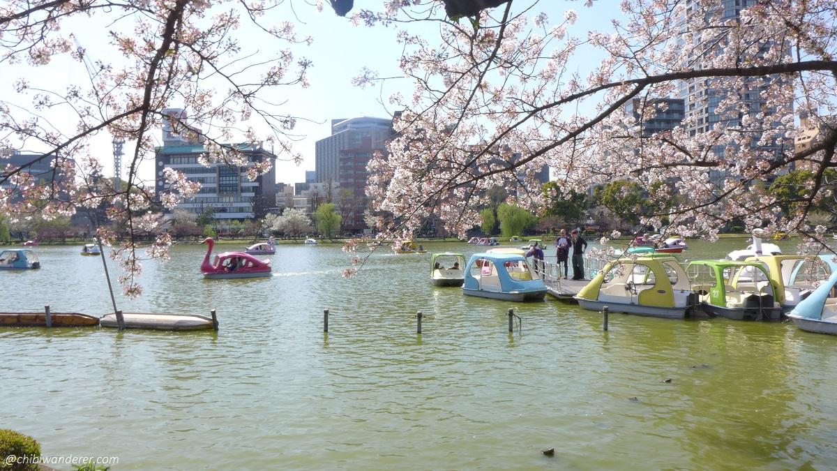Cute rental boat during spring at Ueno Park Japan