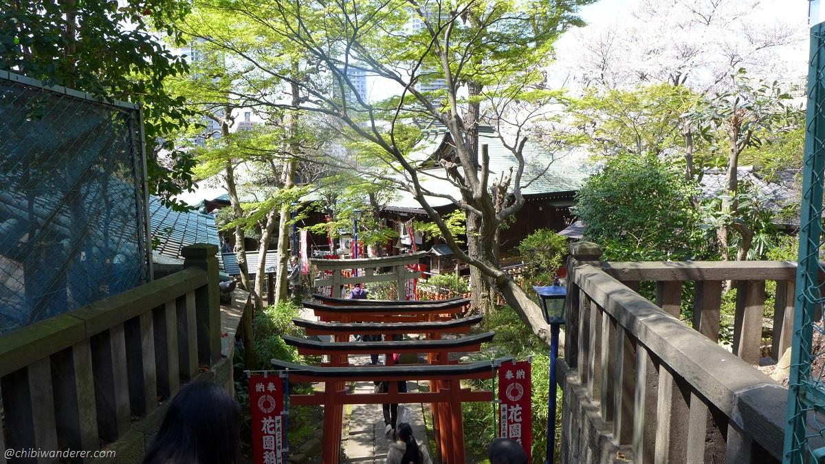 Torii Gates at Ueno Park Japan